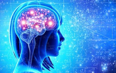 EEG-koherencia a Transzcendentális Meditáció gyakorlása alatt – Dr Fred Travis agykutató