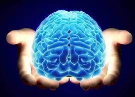 Neuroplasticity: You want it! - Transcendental Meditation | Facebook